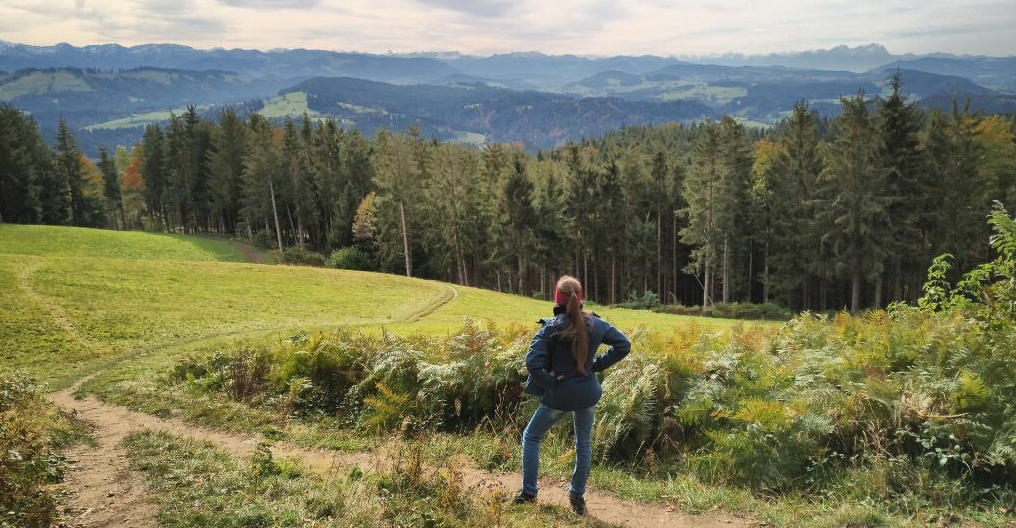 motivation: climbing a mountain